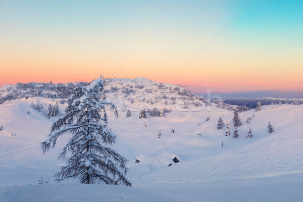 Magical sunset winter in Julian Alps mountains Stock photo © Fesus
