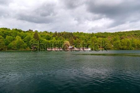 Croazia parco estate erba natura panorama Foto d'archivio © Fesus