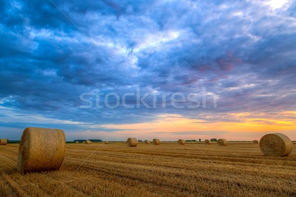 Naplemente farm mező széna vidéki út Stock fotó © Fesus