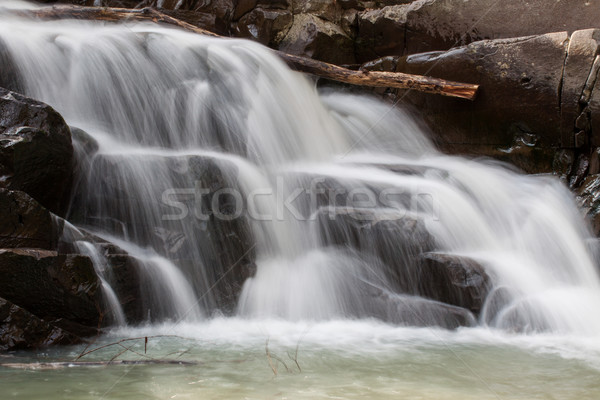 Waterfall in the early morning Stock photo © Fesus