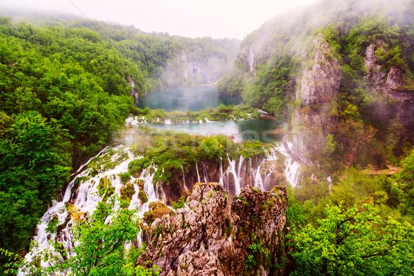 Regenachtig dag park water blad berg Stockfoto © Fesus