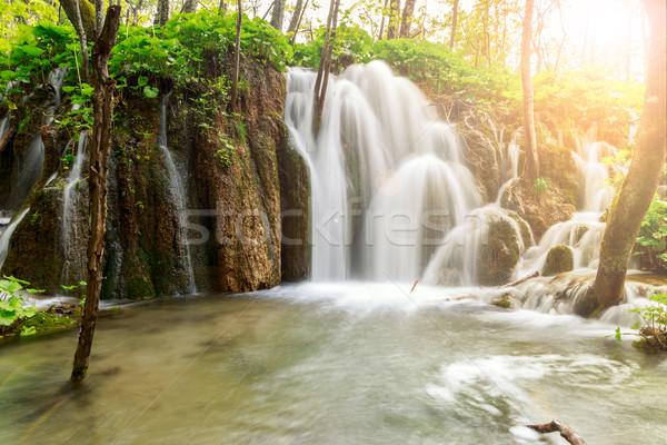 Cascade profonde forêt eau herbe bois Photo stock © Fesus