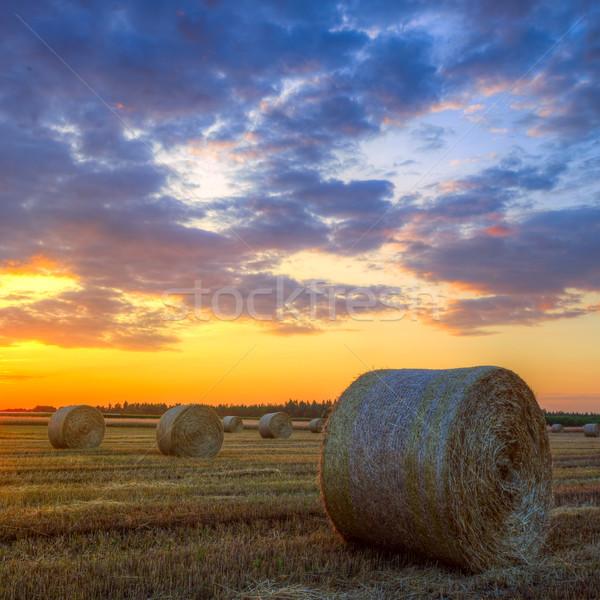 закат фермы области сено конец день Сток-фото © Fesus