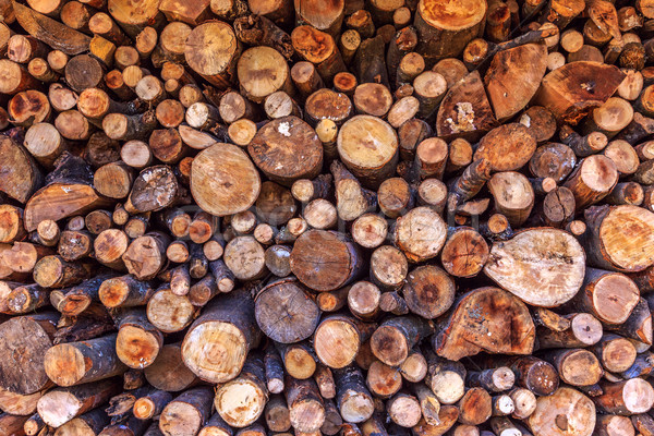 Dry woodpile Stock photo © Fesus
