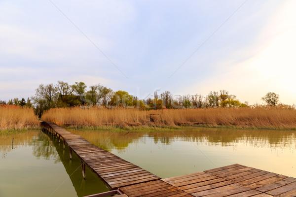 Fából készült móló nyugalmas tó Balaton égbolt Stock fotó © Fesus