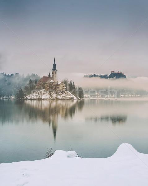 雨の 日 湖 冬 スロベニア ヨーロッパ ストックフォト © Fesus