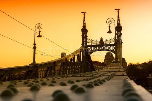 Liberty Bridge - Budapest, Hungary  Stock photo © Fesus