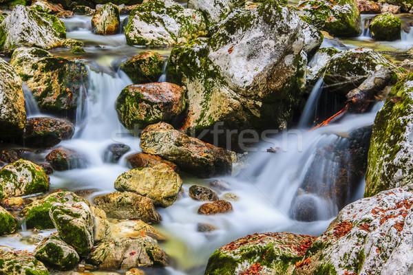 водопада Словения воды природы горные лет Сток-фото © Fesus