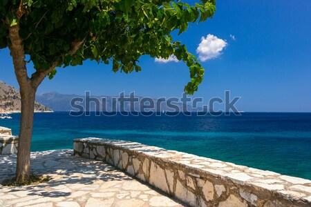 Kefalonia beach and Ionian sea in the Greece Stock photo © Fesus