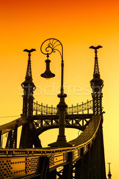 自由 橋 ブダペスト ハンガリー 日没 水 ストックフォト © Fesus