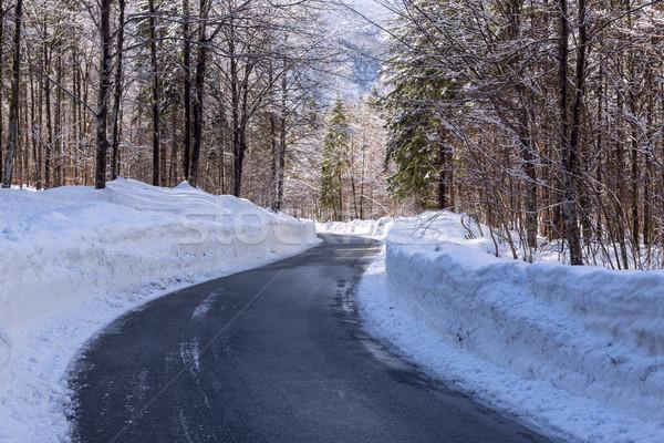 Snowy winter road Stock photo © Fesus
