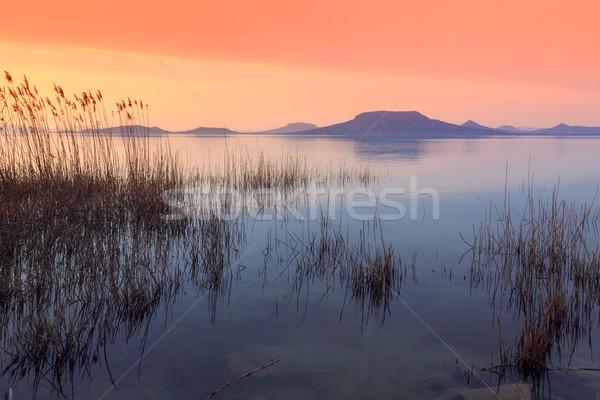 Lake Balaton-Hungary Stock photo © Fesus