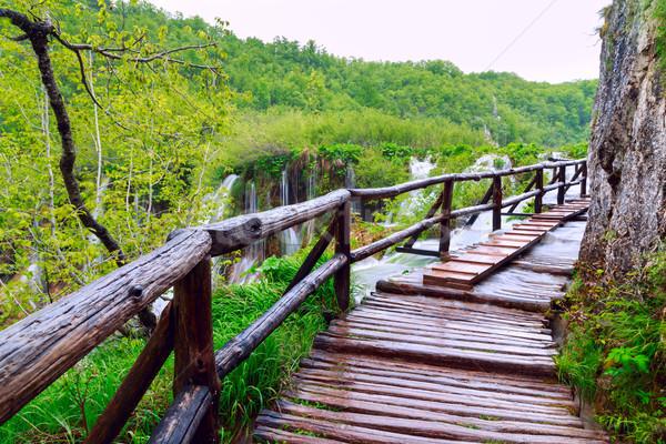 Stok fotoğraf: Ahşap · turist · yol · park · su · ağaç