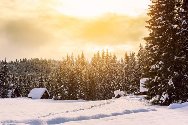 冬 休日 家 スロベニア アルプス山脈 ツリー ストックフォト © Fesus