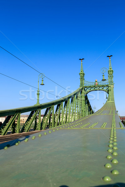 Liberty Bridge in Budapest, Hungary Stock photo © Fesus