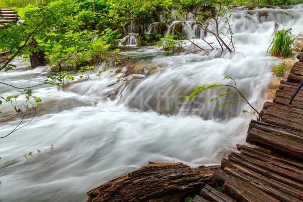 Cascades parc Croatie eau arbre forêt Photo stock © Fesus