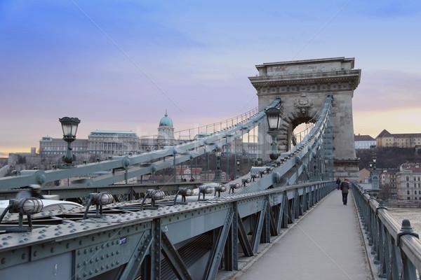 Budapest by night / Chain Bridge Stock photo © Fesus