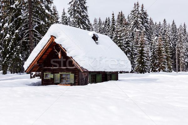 Tél ünnep ház Szlovénia Alpok fa Stock fotó © Fesus