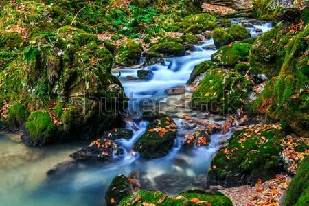 Stockfoto: Kreek · diep · berg · bos · water · hout