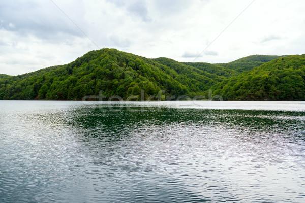 Zdjęcia stock: Parku · Chorwacja · piękna · krajobraz · niebo · wiosną