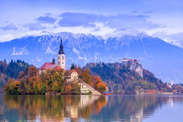 Göl Slovenya Avrupa ada kale dağlar Stok fotoğraf © Fesus
