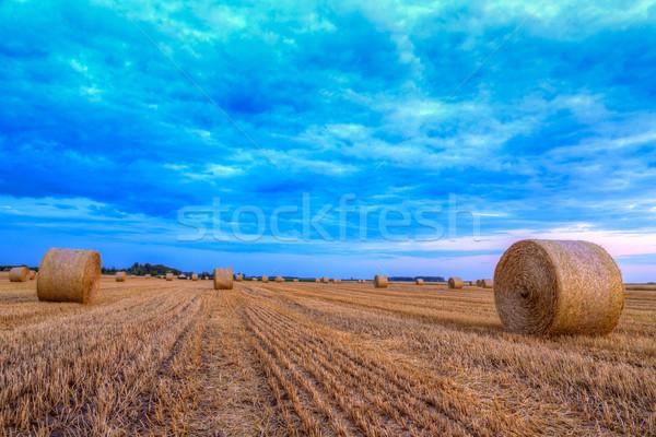 Zonsondergang boerderij veld hooi landelijk weg Stockfoto © Fesus