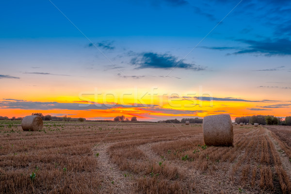 End of day over field with hay bale in Hungary- this photo made  Stock photo © Fesus