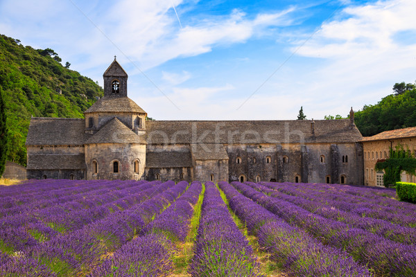 Abbey of Senanque Stock photo © Fesus