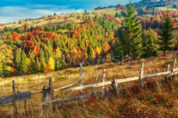 Colorful autumn landscape scene with fence in Transylvania Stock photo © Fesus