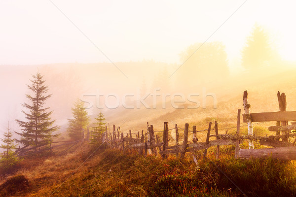 Mountain landscape with fog in Transylvania mountains Stock photo © Fesus