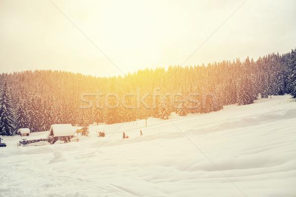 красивой закат зима лес Альпы Словения Сток-фото © Fesus