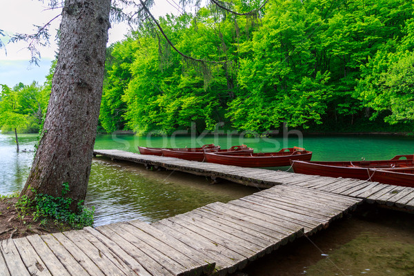 Boats in the national park Plitvice, Croatia Stock photo © Fesus