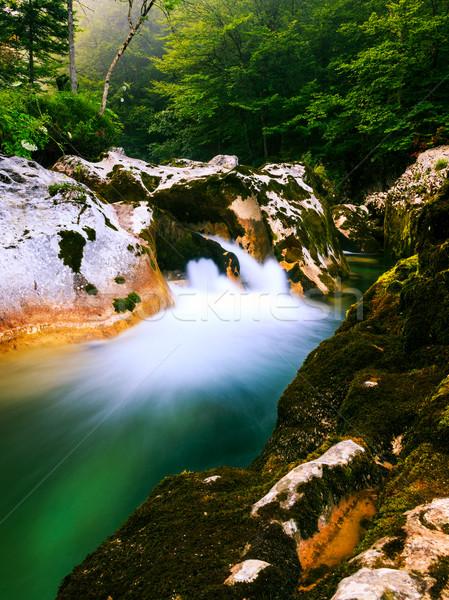 каньон озеро Словения весны лет зеленый Сток-фото © Fesus