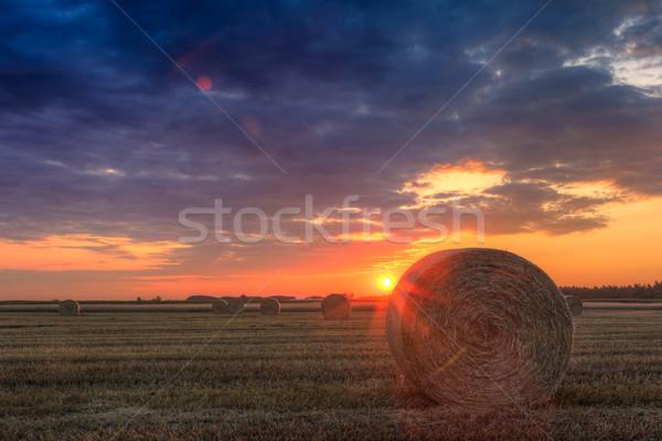 закат фермы области сено облака природы Сток-фото © Fesus