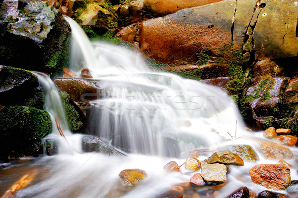 waterfall in the nature  Stock photo © Fesus