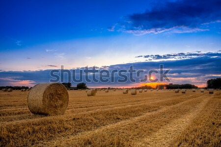 End of day over field with hay bale in Hungary- This photo make  Stock photo © Fesus