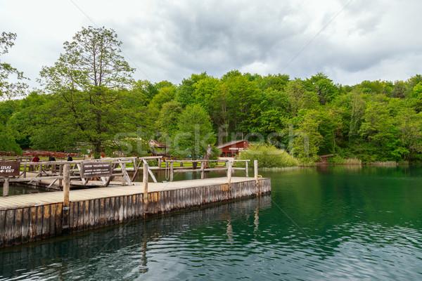 Parque Croácia belo paisagem céu primavera Foto stock © Fesus