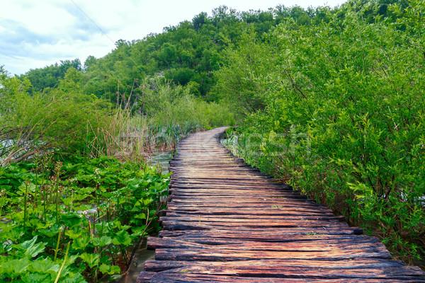 Parque agua primavera hierba carretera naturaleza Foto stock © Fesus