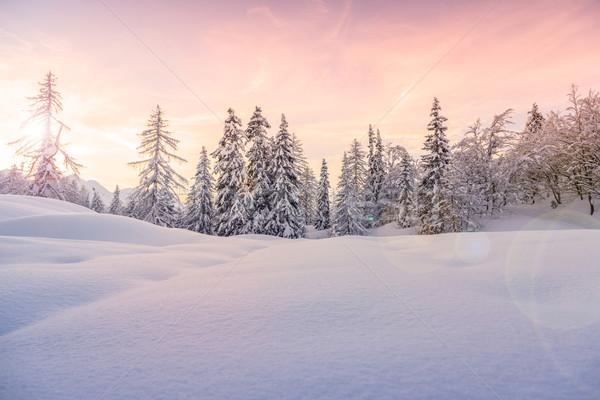 Winter Landschaft Ski Zentrum Berge Alpen Stock foto © Fesus