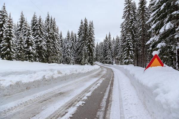 冬 道路 スロベニア アルプス山脈 風景 雪 ストックフォト © Fesus