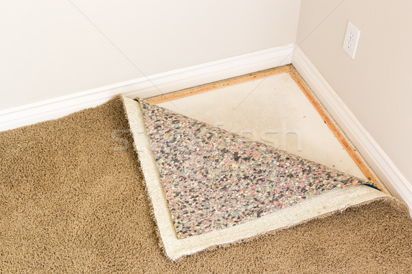 Pulled Back Carpet and Padding In Room Stock photo © feverpitch