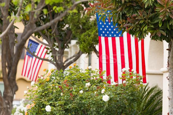Amerikan bayraklar kentsel amerikan bayrağı güzel Stok fotoğraf © feverpitch