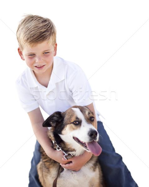 Foto stock: Guapo · jugando · perro · aislado · blanco
