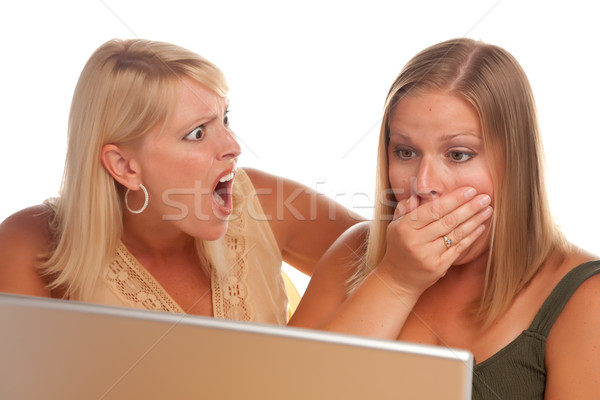 Two Shocked Women Using Laptop Stock photo © feverpitch