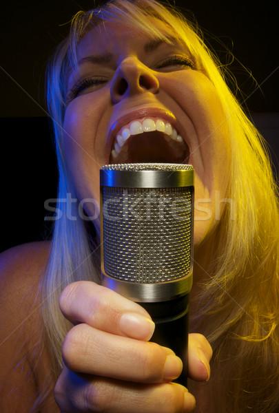 Nő szenvedély mikrofon lány jókedv színpad Stock fotó © feverpitch