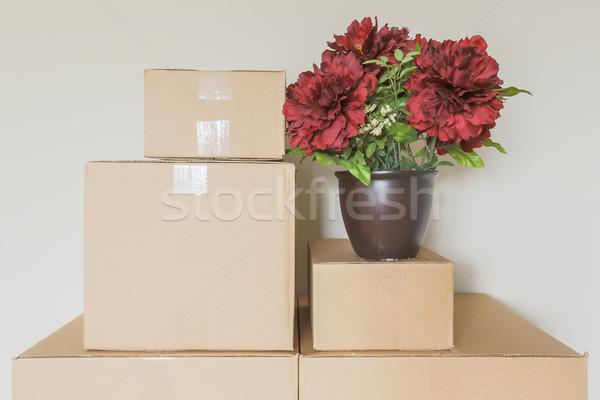 Választék költözködő dobozok üres szoba cserepes növény fal ház Stock fotó © feverpitch