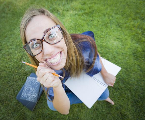 Weitwinkel ziemlich Pfund Bleistift Spaß Stock foto © feverpitch