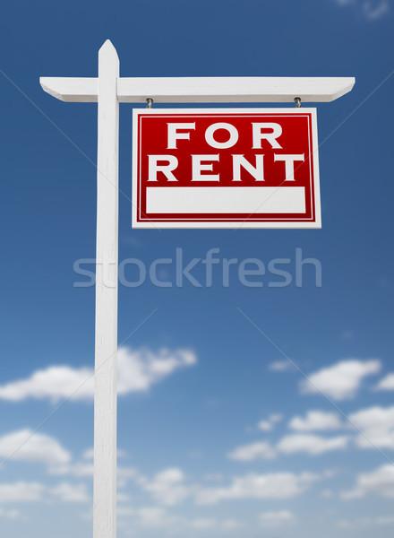 Louer immobilier signe ciel bleu Photo stock © feverpitch