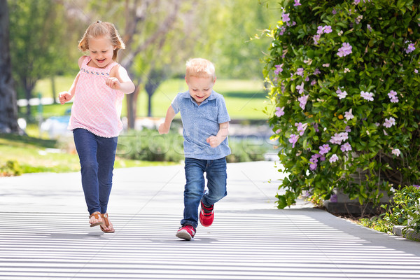 Young Sister and Brother Having Fun Running At The Park Stock photo © feverpitch
