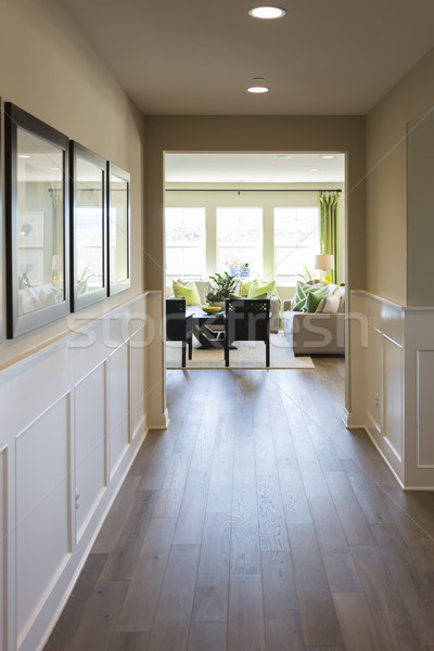 Home Entry Way with Wood Floors and Wainscoting Stock photo © feverpitch
